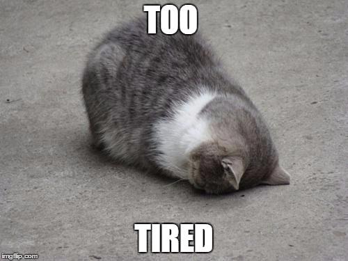 20 tired meme