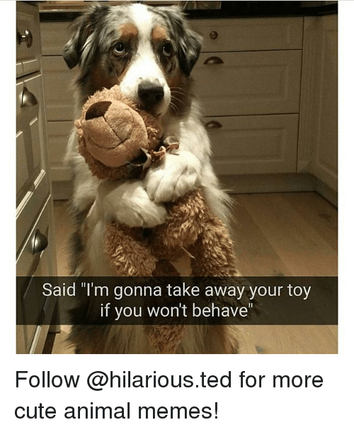 22 animal quotes