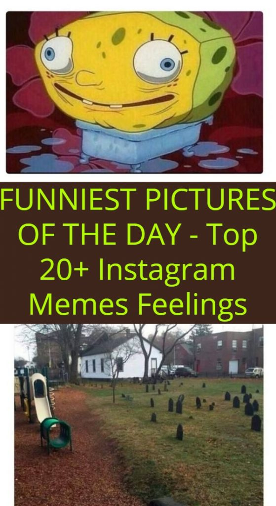 Top 20+ Instagram Memes Feelings